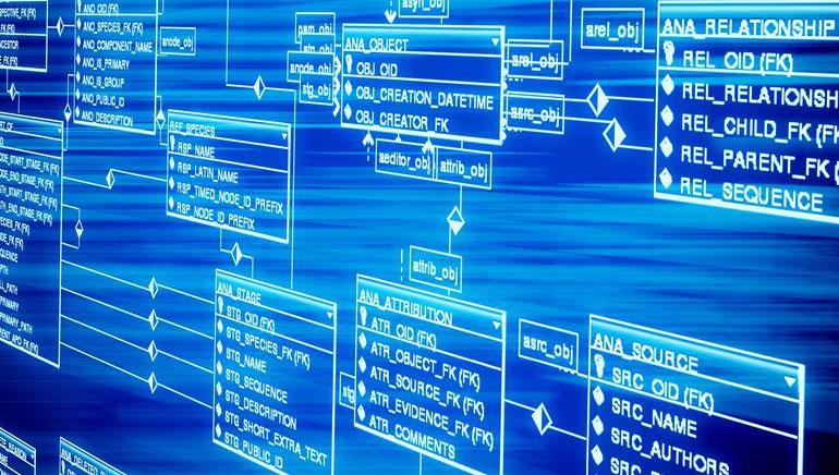 온라인 카지노 소프트웨어